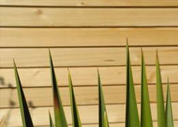 RhomTREND Sichtschutz aus Lärchenholz