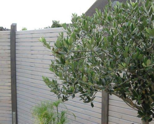 rhomTREND Rhombus-Sichtschutzzaun: Elemente in silbergrau und Pfosten in schiefer lasiert